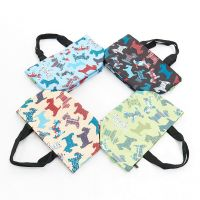 Eco Chic Cool Lunch Bags Mixed Design