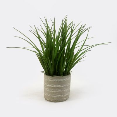 Artificial Grasses in Cement Pot