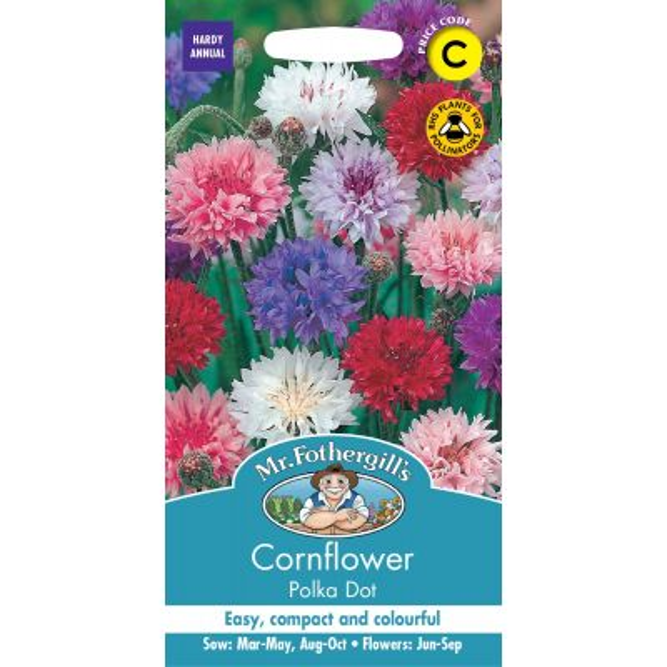Cornflower Polka Dot